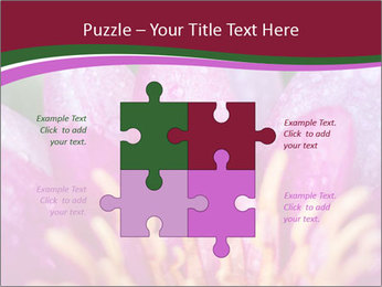 Pink water lily PowerPoint Templates - Slide 43