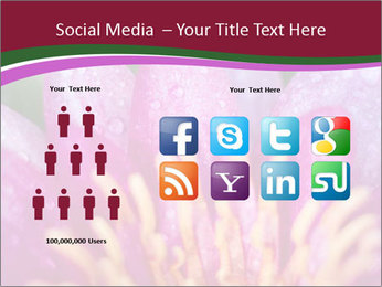 Pink water lily PowerPoint Templates - Slide 5