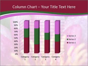 Pink water lily PowerPoint Templates - Slide 50