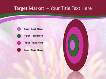 Pink water lily PowerPoint Templates - Slide 84