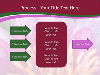 Pink water lily PowerPoint Templates - Slide 85
