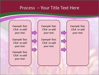 Pink water lily PowerPoint Templates - Slide 86