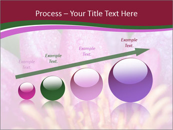 Pink water lily PowerPoint Templates - Slide 87
