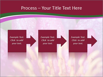 Pink water lily PowerPoint Templates - Slide 88