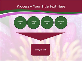 Pink water lily PowerPoint Templates - Slide 93