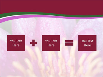 Pink water lily PowerPoint Templates - Slide 95