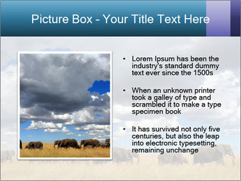 Elephants marching PowerPoint Templates - Slide 13