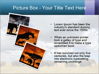 Elephants marching PowerPoint Templates - Slide 17
