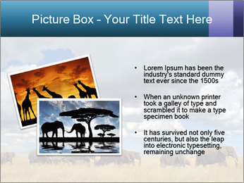 Elephants marching PowerPoint Templates - Slide 20