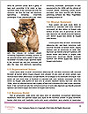 0000094746 Word Templates - Page 4