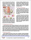 0000094750 Word Templates - Page 4