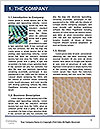 0000094751 Word Template - Page 3