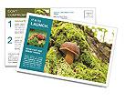 0000094757 Postcard Templates