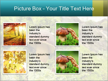 Fungus on a tree PowerPoint Template - Slide 14