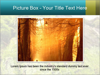 Fungus on a tree PowerPoint Template - Slide 15