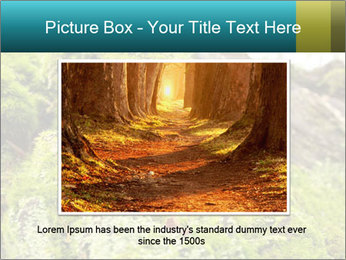 Fungus on a tree PowerPoint Template - Slide 16