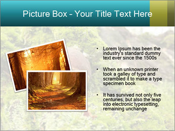 Fungus on a tree PowerPoint Template - Slide 20