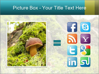 Fungus on a tree PowerPoint Template - Slide 21