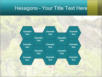 Fungus on a tree PowerPoint Template - Slide 44