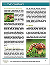 0000094757 Word Template - Page 3