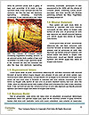 0000094757 Word Template - Page 4