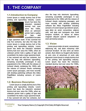 0000094760 Word Template - Page 3