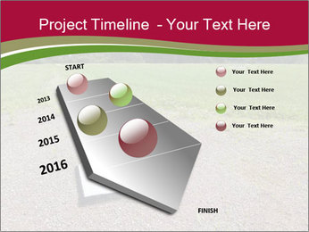 Home plate PowerPoint Templates - Slide 26