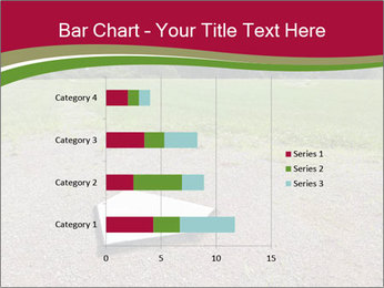 Home plate PowerPoint Templates - Slide 52