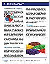 0000094771 Word Template - Page 3