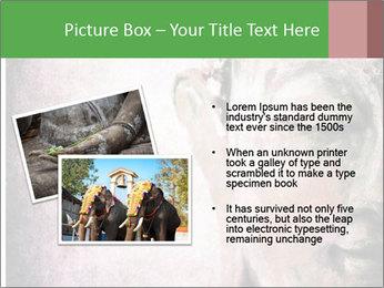 Grunge Buddha red PowerPoint Template - Slide 20