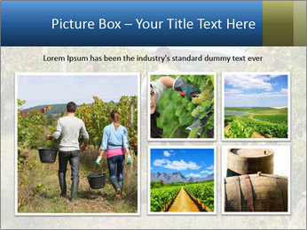 Couple walking PowerPoint Templates - Slide 19