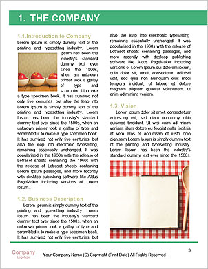 0000094777 Word Template - Page 3