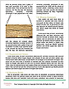 0000094777 Word Templates - Page 4