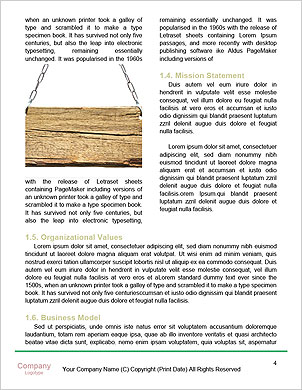 0000094777 Word Template - Page 4