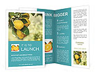 0000094836 Brochure Templates