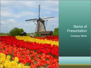Dutch windmill Modèles des présentations  PowerPoint
