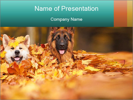 Two dogs powerpoint template backgrounds google slides id two dogs powerpoint template toneelgroepblik Choice Image