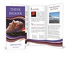 0000095021 Brochure Templates