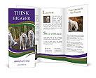 0000095149 Brochure Templates