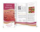 0000095206 Brochure Templates