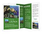 0000095234 Brochure Templates