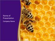 Working bees on honeycells PowerPoint Templates