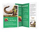 0000095369 Brochure Templates