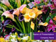 Various flowers Modelos de apresentações PowerPoint