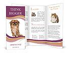 0000095434 Brochure Templates