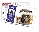 0000095447 Postcard Templates