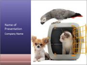 Cat closed PowerPoint Templates