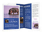 0000095579 Brochure Templates
