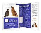 0000095608 Brochure Templates