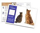 0000095608 Postcard Templates